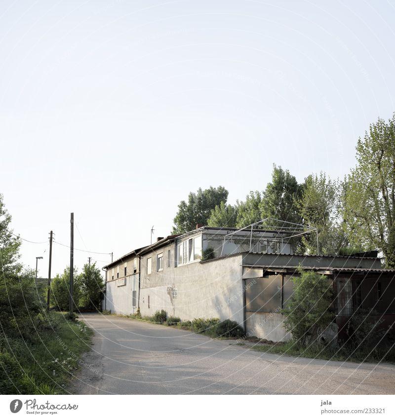 dachterrasse alt Baum Pflanze Haus Fenster Wand Architektur Mauer Gebäude Fassade trist Sträucher Bauwerk Verfall Strommast Lagerhalle