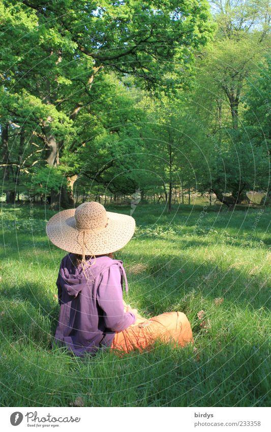 romantisches Mädchenfoto mit Mädchen Stil Glück Sinnesorgane ruhig Duft Frau Erwachsene 1 Mensch Natur Frühling Sommer Schönes Wetter Park Wiese Waldlichtung