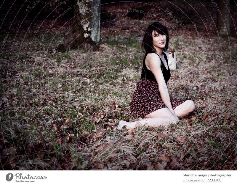 Mensch Natur Jugendliche Baum Erwachsene Einsamkeit Wald Erholung feminin Gras träumen sitzen Kleid 18-30 Jahre Gelassenheit brünett