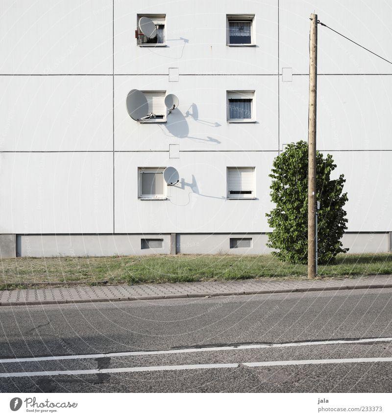 satsatt Pflanze Sträucher Wiese Haus Bauwerk Gebäude Architektur Mehrfamilienhaus Fassade Fenster Satellitenantenne Strommast Straße Wege & Pfade Bürgersteig