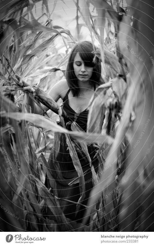 im chaos der gefühle Mensch Frau Natur Jugendliche Erwachsene feminin Gefühle Feld gehen natürlich Suche 18-30 Jahre Junge Frau berühren Schwarzweißfoto