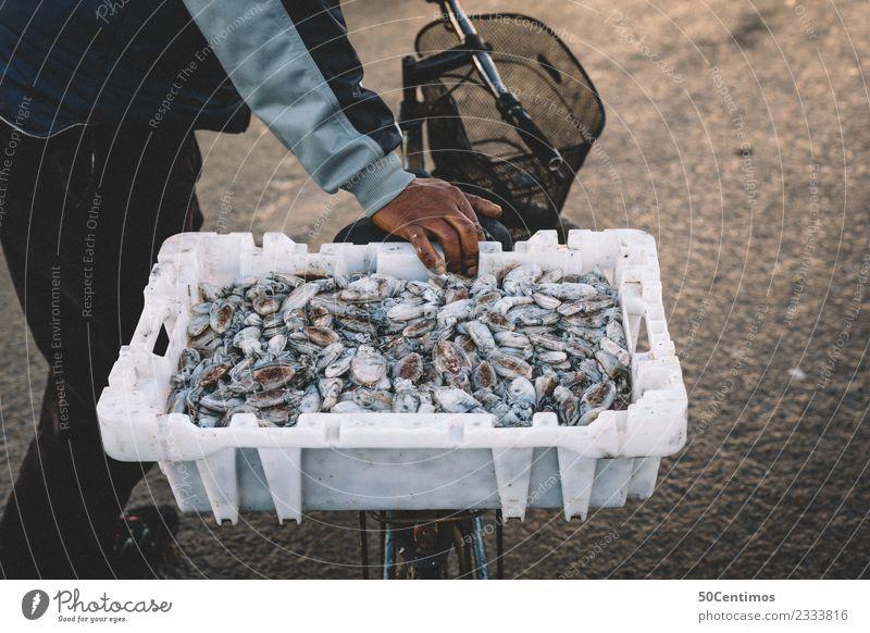 Viel Frischer gehts wohl nicht... Hand Ferne Lebensmittel Freizeit & Hobby maskulin Fahrrad Abenteuer Tiergruppe kaufen Fisch Dorf Appetit & Hunger Handel