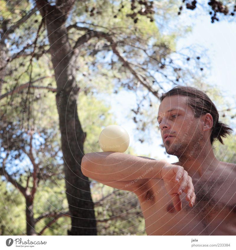 konzentriert Mensch Mann Baum Erwachsene maskulin ästhetisch Ball Schönes Wetter Konzentration Gleichgewicht Sport-Training langhaarig Zopf 30-45 Jahre Trick
