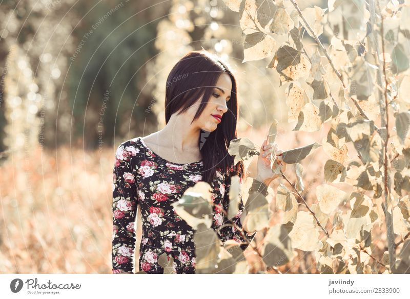 Junge Frau in der Natur sieht nach Pflanzen aus. Lifestyle Glück schön Gesicht Sommer Sonne Mensch feminin Jugendliche Erwachsene 1 18-30 Jahre Herbst Park Mode