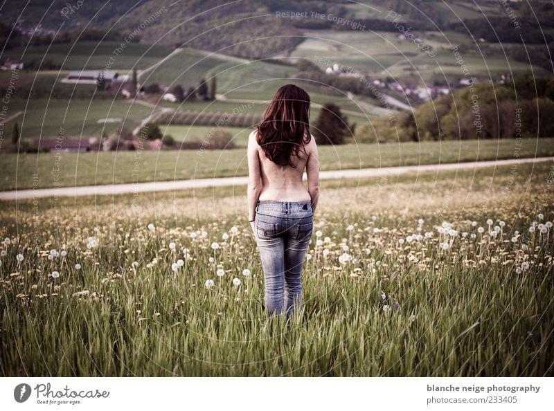 frühlingserwachen Mensch Frau Natur Jugendliche schön Erwachsene Ferne Wiese feminin Stimmung Feld Rücken warten frei 18-30 Jahre Jeanshose