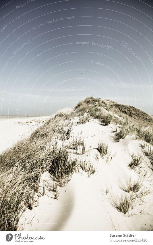 Spiekeroog | time for rest Landschaft Wolkenloser Himmel Sonnenlicht Schönes Wetter Nordsee Meer Insel Wüste Düne Stranddüne Dünengras Erholung Außenaufnahme