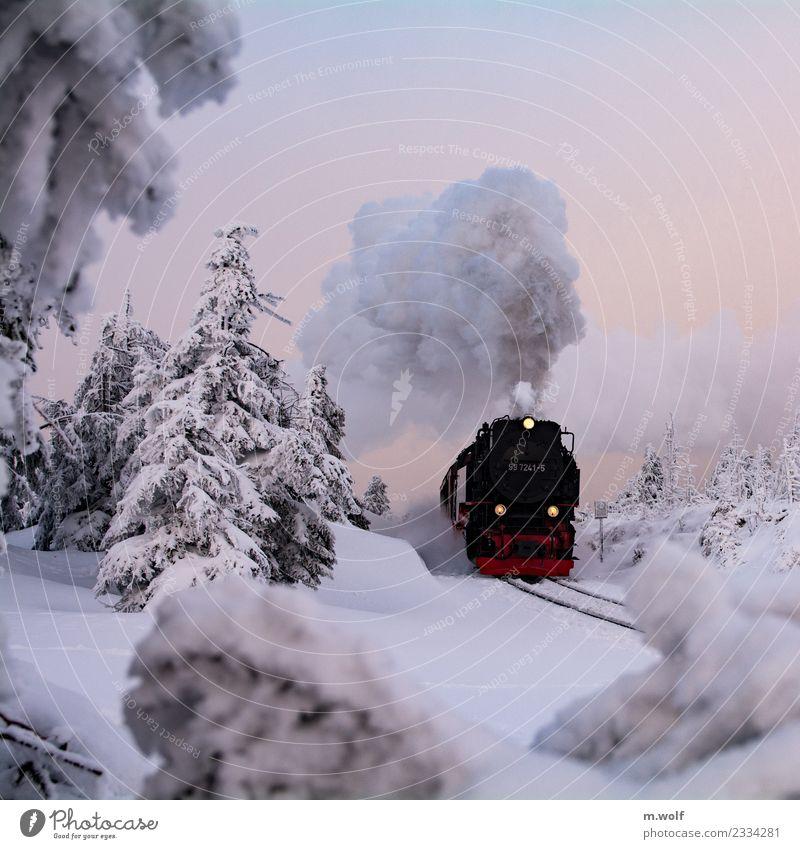 Brocken/Harz Natur Ferien & Urlaub & Reisen Landschaft weiß rot Winter Berge u. Gebirge schwarz Schnee außergewöhnlich Tourismus Ausflug wild wandern Eis