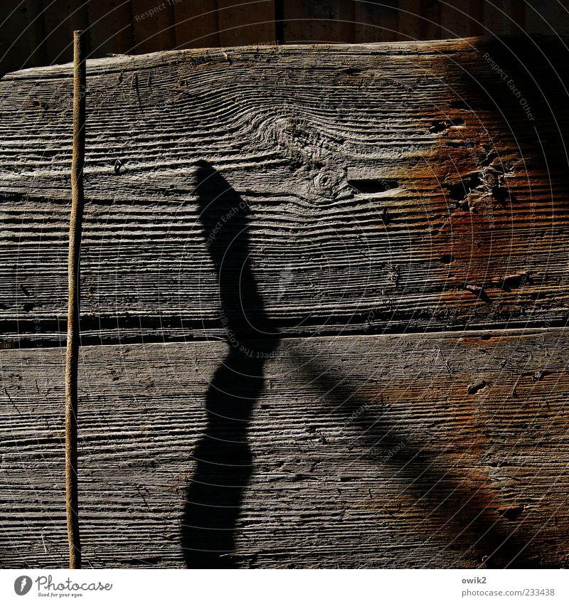 Holz und Eisen schwarz Holz grau Metall braun Kraft außergewöhnlich stehen Spitze Vergänglichkeit einfach dünn nah lang Vergangenheit Mut