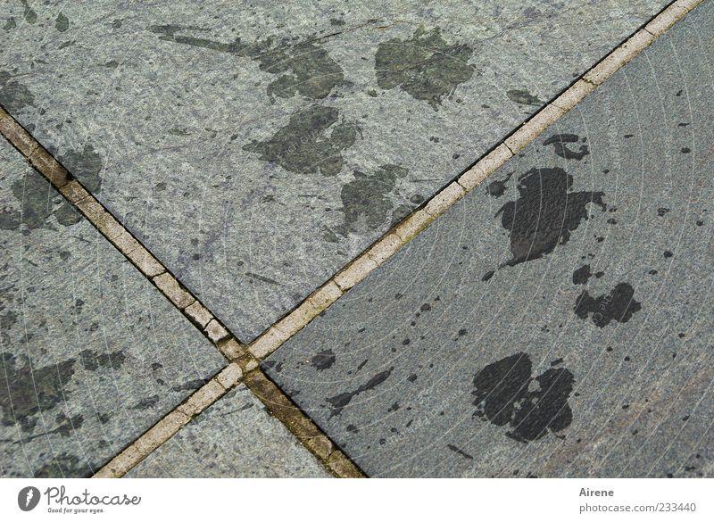 Spurensuche: eindeutig nasser Hund Wasser Freude schwarz grau Stein lustig natürlich Beton Wassertropfen Fröhlichkeit Zeichen Kreuz positiv silber