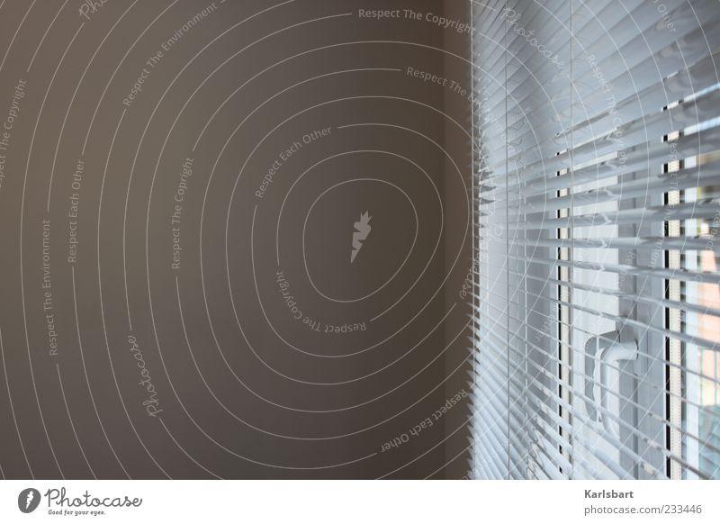 am. fenster. Mauer Wand Fenster hell seriös Einsamkeit modern Jalousie Gebäude Bürofenster ruhig Farbfoto Innenaufnahme Detailaufnahme Strukturen & Formen