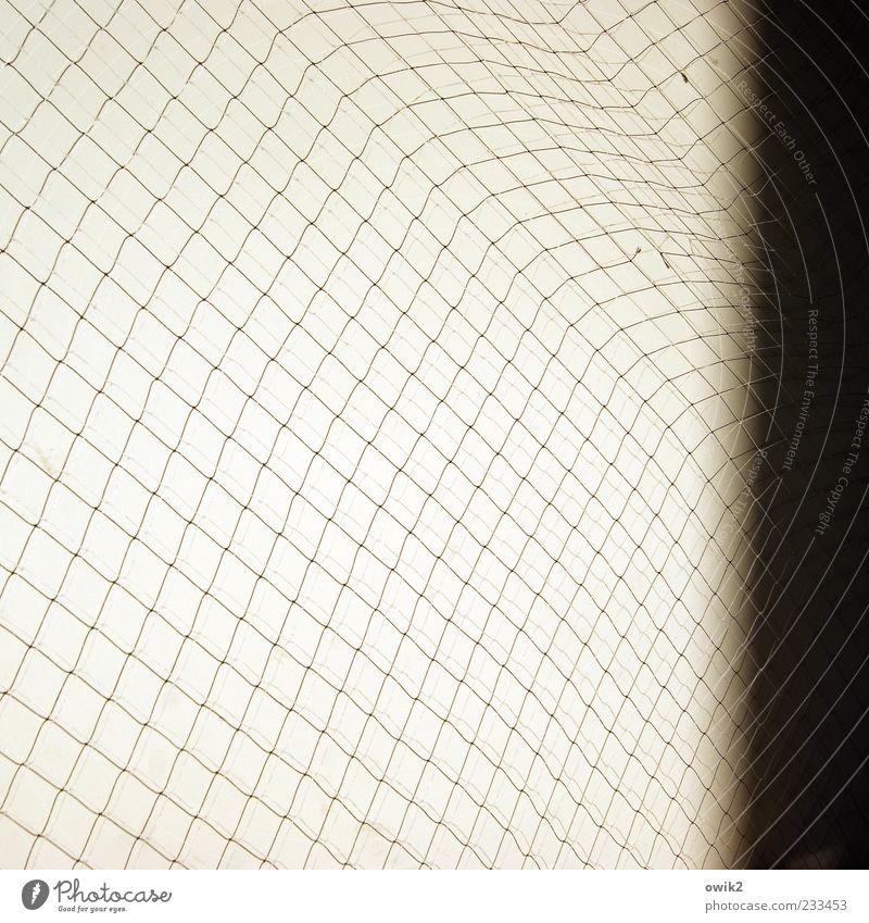 Alles Masche weiß schwarz hell elegant weich viele einfach Kunststoff Netz dünn fest nah Zusammenhalt leicht Leichtigkeit Textfreiraum