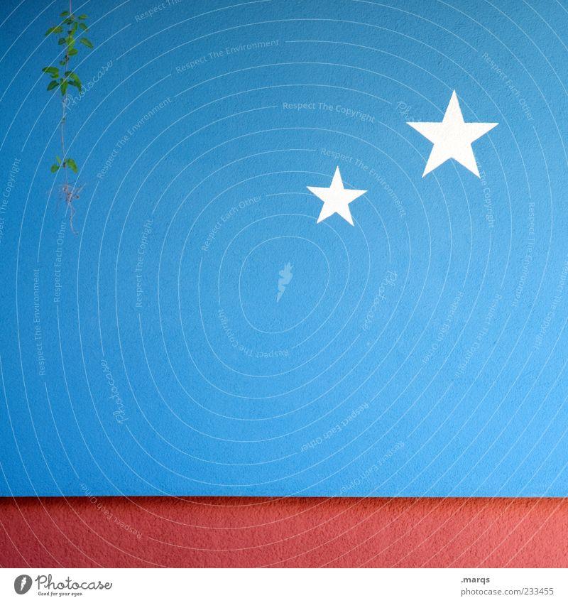 Sternenklar blau weiß rot Pflanze Farbe Wand Graffiti Mauer Stern (Symbol) einfach Zeichen Straßenkunst