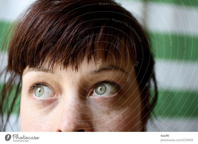 somewhere else Jugendliche grün Gesicht Auge Haare & Frisuren Denken träumen Zufriedenheit Haut natürlich Hoffnung Streifen nachdenklich beobachten Sehnsucht