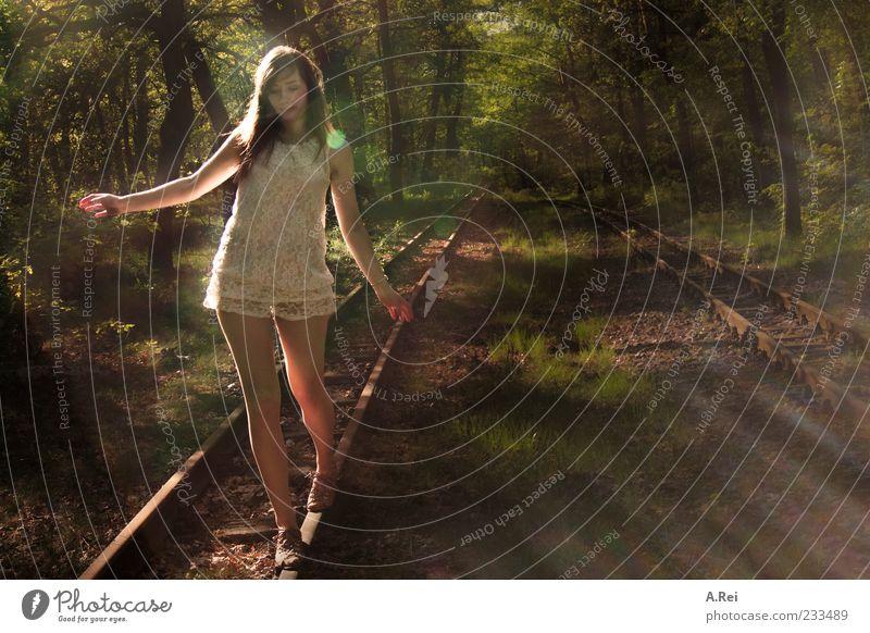 die ersten Sommertage Mensch Jugendliche grün schön Baum Erwachsene Wald feminin braun 18-30 Jahre Kleid Junge Frau Gleise brünett Gleichgewicht Spitze