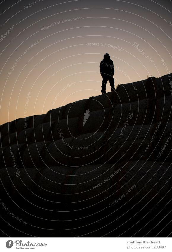 SEE YOU TOMORROW Mensch Natur Sommer Einsamkeit ruhig Umwelt oben warten maskulin außergewöhnlich stehen einzigartig beobachten Idylle Schönes Wetter Stapel
