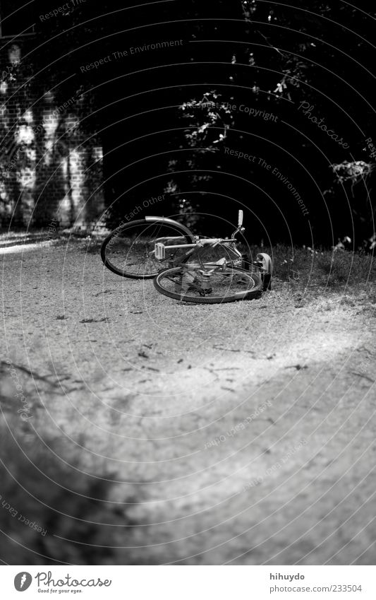 schlafenzeit Fahrrad Natur Wiese ruhig Schwarzweißfoto Außenaufnahme Menschenleer Textfreiraum unten Tag Dämmerung Kontrast Sonnenlicht Starke Tiefenschärfe