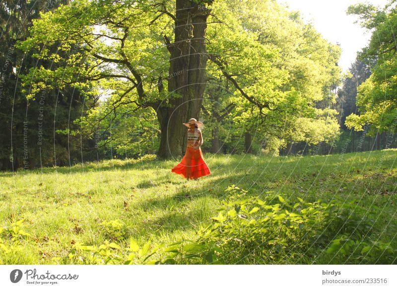 Lustwandeln Mensch Natur Jugendliche Sommer Baum Freude Junge Frau Wiese feminin Frühling Freiheit hell träumen natürlich gehen Park