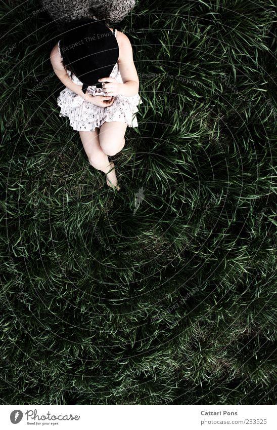 relaxed rabbit Mensch Natur Jugendliche weiß grün Pflanze ruhig feminin Gras Junge Frau Beine Arme sitzen Kleid festhalten geheimnisvoll