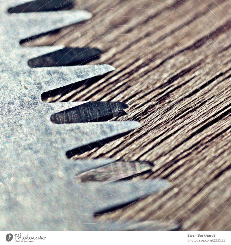 Der letzte Schliff Freizeit & Hobby Handwerker Arbeitsplatz Werkzeug Säge Holz Metall Stahl Spitze stachelig braun grau silber Genauigkeit Kreativität