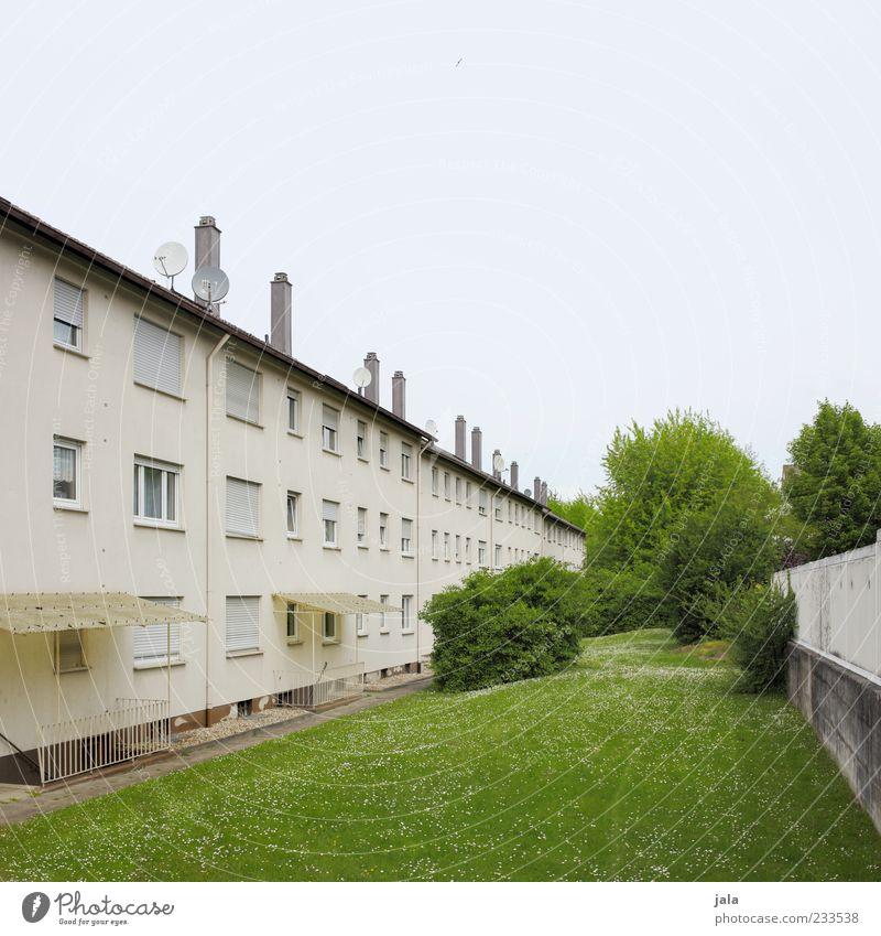 grünanlage Baum Gras Sträucher Wiese Haus Bauwerk Gebäude Architektur Mehrfamilienhaus Fenster Schornstein Satellitenantenne trist Wohngebiet Farbfoto