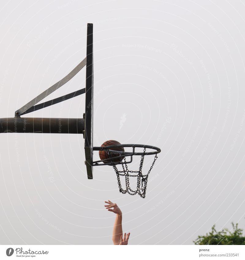 streetball Freude Spielen Ballsport Sportler Arme Hand Finger 1 Mensch Himmel Baum Park Metall werfen grau grün Kette Stahlträger Treffer zielen Basketball