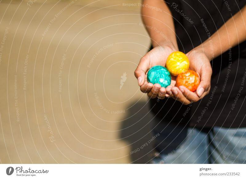Feiertagsausbeute Kindheit Arme Hand Finger 1 Mensch Fröhlichkeit mehrfarbig Ostern Osterei 3 festhalten zeigen anbieten Tradition Schatten finden Stolz bemalt
