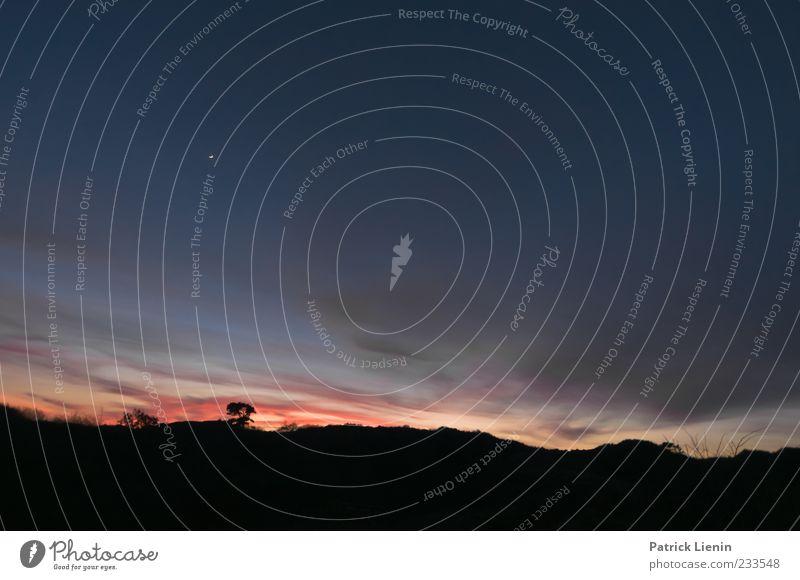 Spiekeroog | Wie alles begann schön Ferne Umwelt Natur Landschaft Urelemente Luft Himmel Wolken Nachthimmel Mond Wetter Baum dunkel blau rot Stimmung Einsamkeit