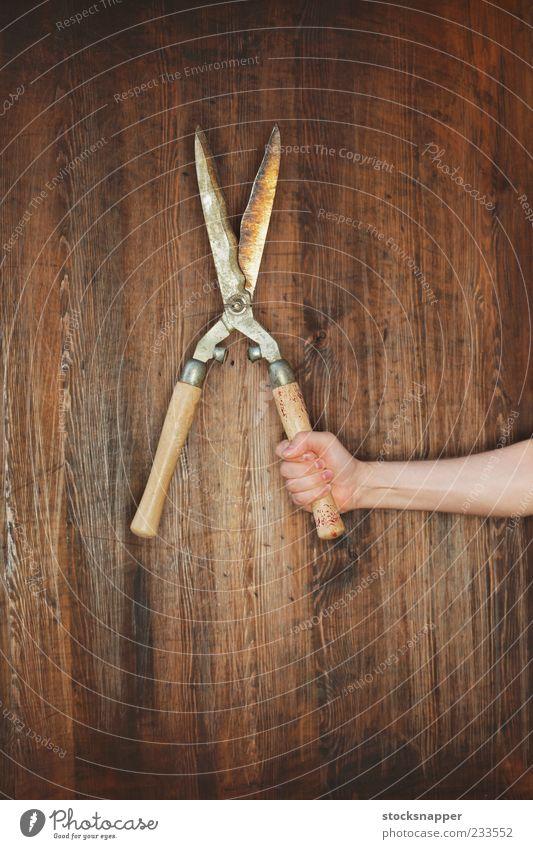 Hand alt Rost Werkzeug greifen Gartenarbeit Hecke