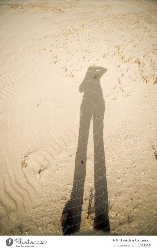Spiekeroog l walking tall Mensch Frau Ferien & Urlaub & Reisen Sonne Strand Erwachsene Wärme Sand Beine Insel Schönes Wetter festhalten Nordsee lang dünn Düne
