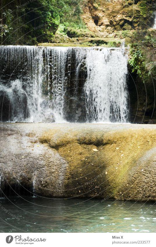 Wasserfall Natur Baum Blatt Wald Ferne Umwelt Felsen nass Sträucher Fluss Idylle Urwald fließen spritzen