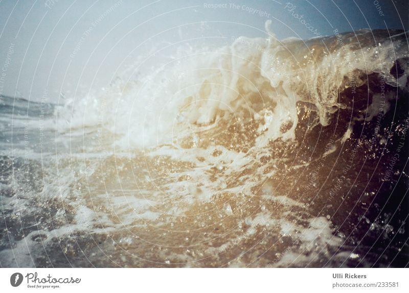 In den Wellen Wasser Sommer Meer Freiheit Wellen Kraft Schwimmen & Baden nass Wassertropfen Insel Schönes Wetter Nordsee Brandung brechen Wolkenloser Himmel spritzen