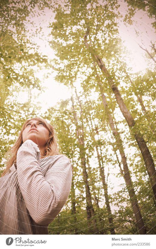 Enchanted Mensch Frau Natur schön Baum Sommer Blatt Erwachsene Wald Gefühle Frühling blond Baumstamm Zweige u. Äste