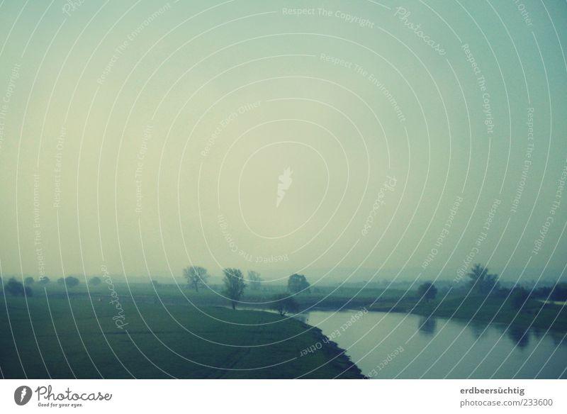Der Fluss Natur Landschaft Pflanze Himmel Nebel Baum Gras Flussufer Elbe Wasser Unendlichkeit blau grün ruhig Idylle Ferne geheimnisvoll Reflexion & Spiegelung
