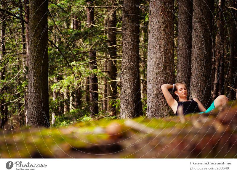 da! ein reh! Mensch Frau Natur Jugendliche Baum Sommer Einsamkeit ruhig Erwachsene Wald Erholung Umwelt feminin Beine träumen Zufriedenheit