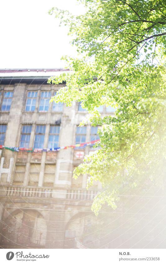 Sunlight in Town Gebäude hell einzigartig Bauwerk