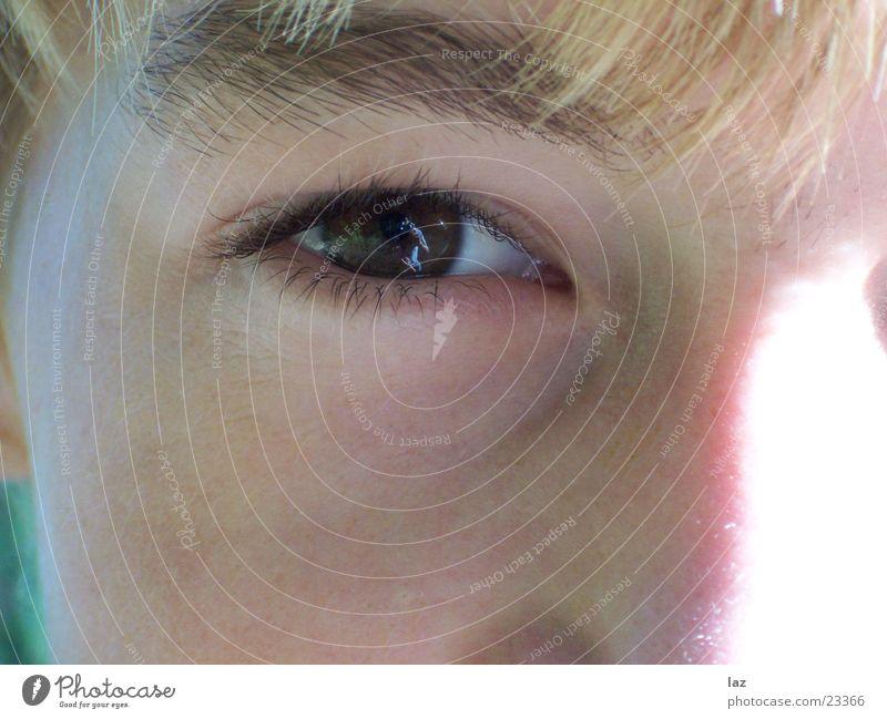 Auge braun Spiegel Reflexion & Spiegelung Augenbraue Wimpern Kind Makroaufnahme