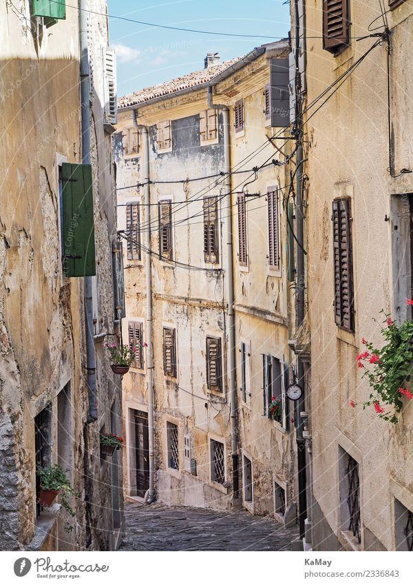 Gasse in der Altstadt von Motovun Kroatien Europa Kleinstadt Stadt Menschenleer Haus Gebäude Architektur Fassade Straße alt authentisch historisch gelb