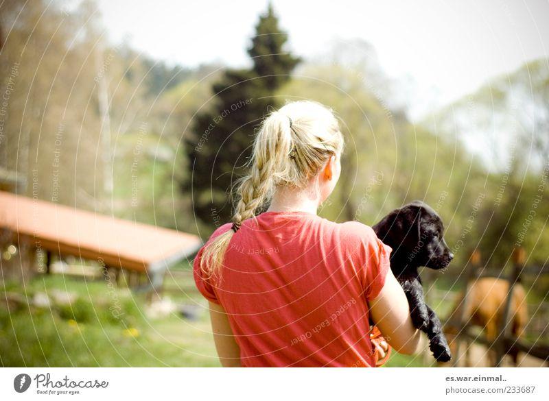 auf dem land. Mensch Hund Natur Sommer Tier Erholung feminin Tierjunges blond T-Shirt Zopf tragen Tierliebe Welpe geflochten Naturliebe