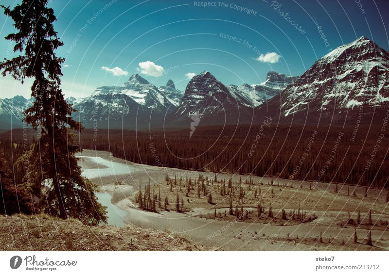kanadisch blau Himmel Natur Wolken Ferne Landschaft Berge u. Gebirge Idylle Schönes Wetter Flussufer Kanada Tal Blauer Himmel Schneebedeckte Gipfel Ebene