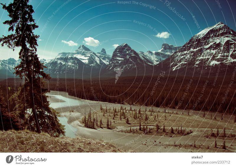 kanadisch blau Himmel Natur Wolken Ferne Landschaft Berge u. Gebirge Idylle Schönes Wetter Flussufer Kanada Tal Blauer Himmel Schneebedeckte Gipfel Ebene gigantisch Kiefer