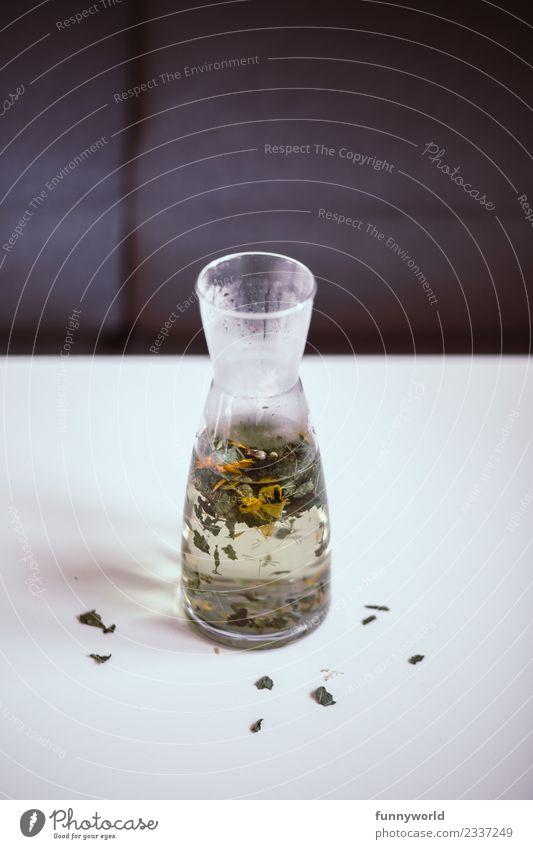 Karaffe auf weißem Tisch mit heißem Kräutertee Getränk Heißgetränk Tee Lifestyle Stil Gesundheit Alternativmedizin Gesunde Ernährung frisch Kräuter & Gewürze