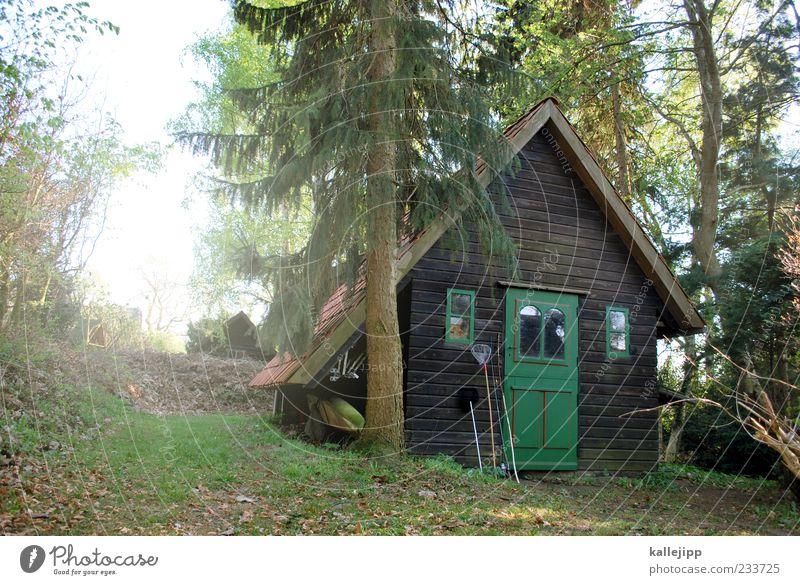 der fischer und seine frau Lifestyle Stil Erholung ruhig Ferne Freiheit Sonne Häusliches Leben Wohnung Haus Garten frei Hütte Angelrute Kescher Holz Baum Tanne