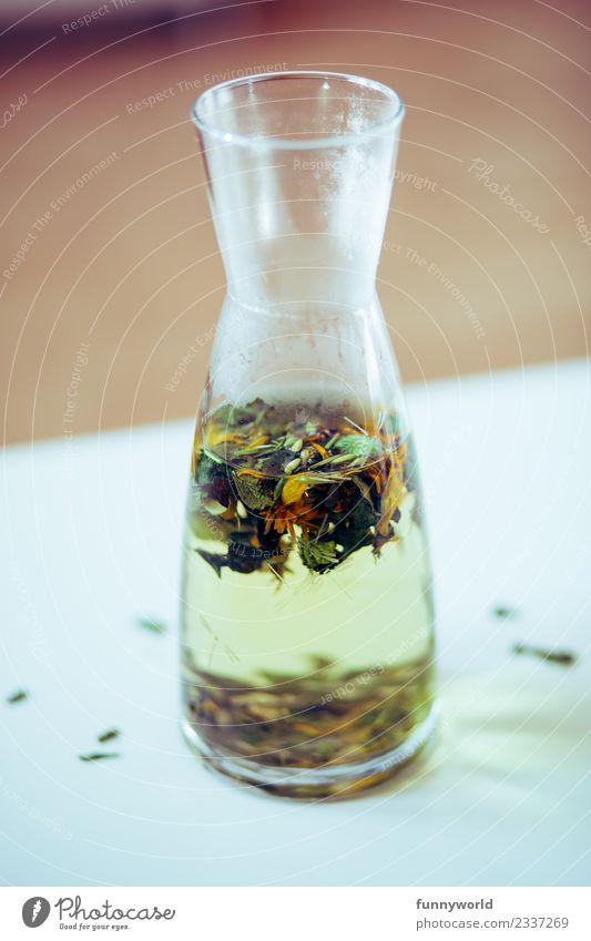Karaffe auf weißem Tisch mit Kräutertee Tee Gesundheit oben Fasten Diät heiß beschlagen Karaffen losgelöst Blüte Kräuter & Gewürze frisch Gesunde Ernährung