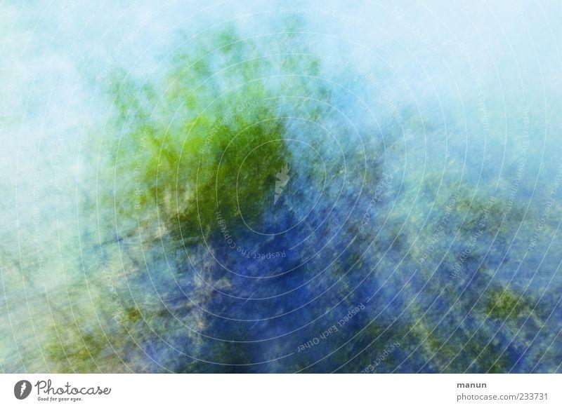 Tanz in den Mai Natur blau grün Baum Blatt Bewegung Frühling Hintergrundbild außergewöhnlich fantastisch abstrakt bizarr Baumkrone Surrealismus Textfreiraum