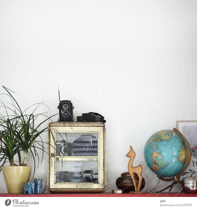 regaldinge schön Pflanze Wohnung Dekoration & Verzierung Kitsch Fotokamera Landkarte Wohnzimmer Globus Sammlung Figur Dose altehrwürdig einrichten Möbel Schrank