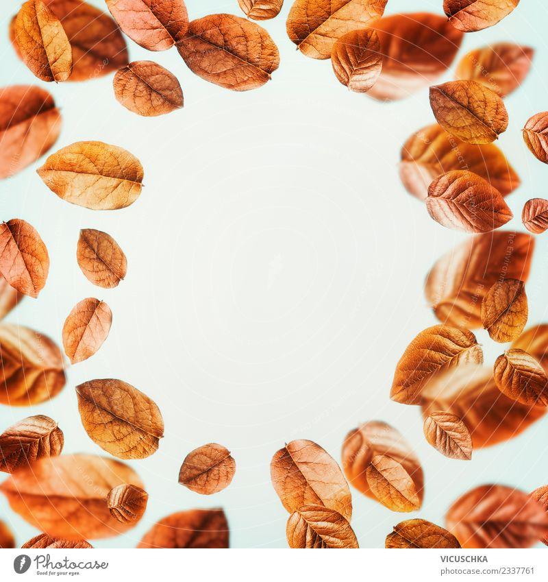 Hintergrund mit fliegenden Herbstblätter Stil Design Natur Pflanze Blatt gelb Hintergrundbild Entwurf September arrangiert Oktober November Herbslaub orange
