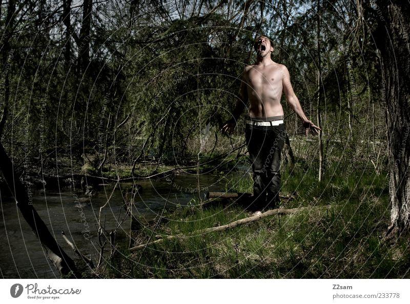 urschrei Mensch Natur Baum Wald Umwelt dunkel Gras Angst maskulin außergewöhnlich verrückt stehen Lifestyle bedrohlich Kommunizieren Jeanshose