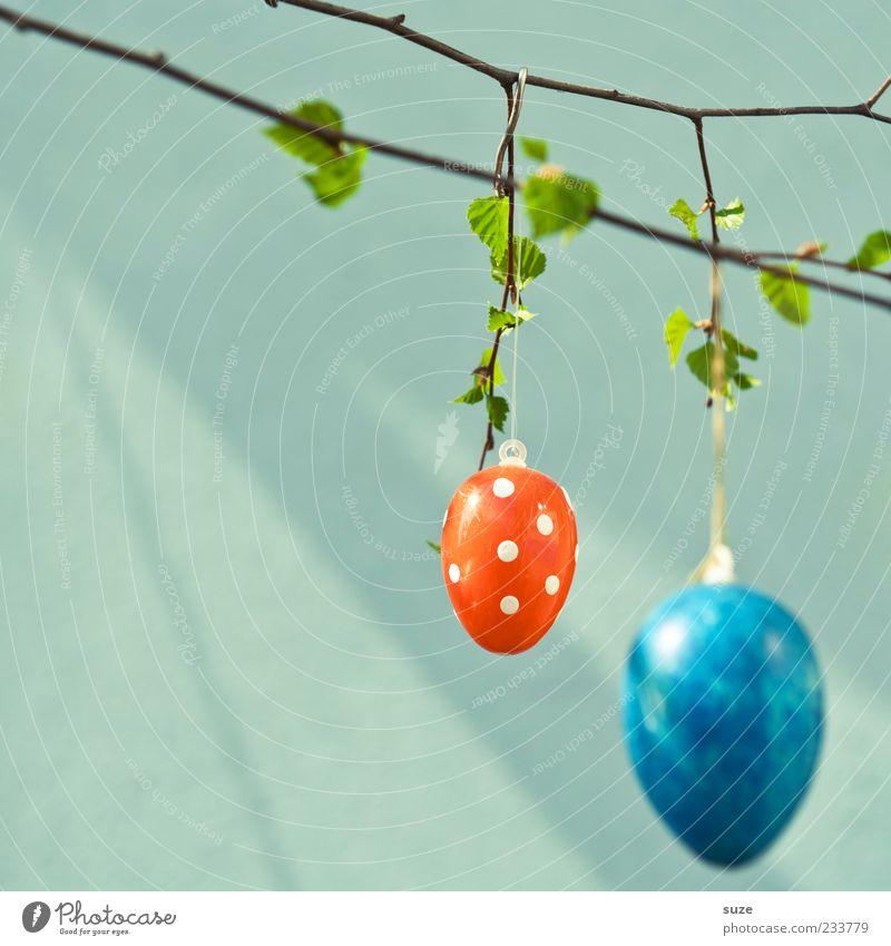 A.I. blau schön rot Farbe Blatt Frühling Glück klein authentisch Fröhlichkeit Dekoration & Verzierung niedlich einfach rund Ostern Kitsch