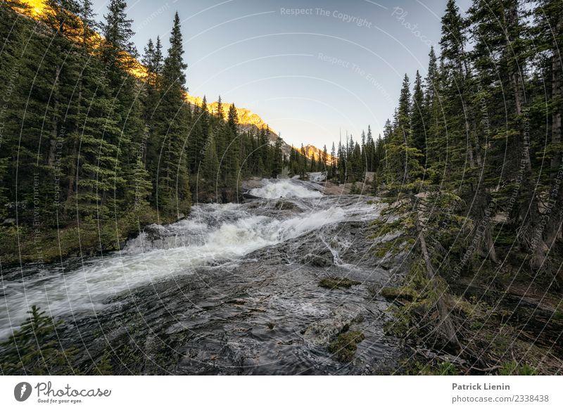 Cross Creek, Colorado Wellness Zufriedenheit Sinnesorgane Erholung ruhig Ferien & Urlaub & Reisen Tourismus Ausflug Abenteuer Ferne Freiheit Sommer