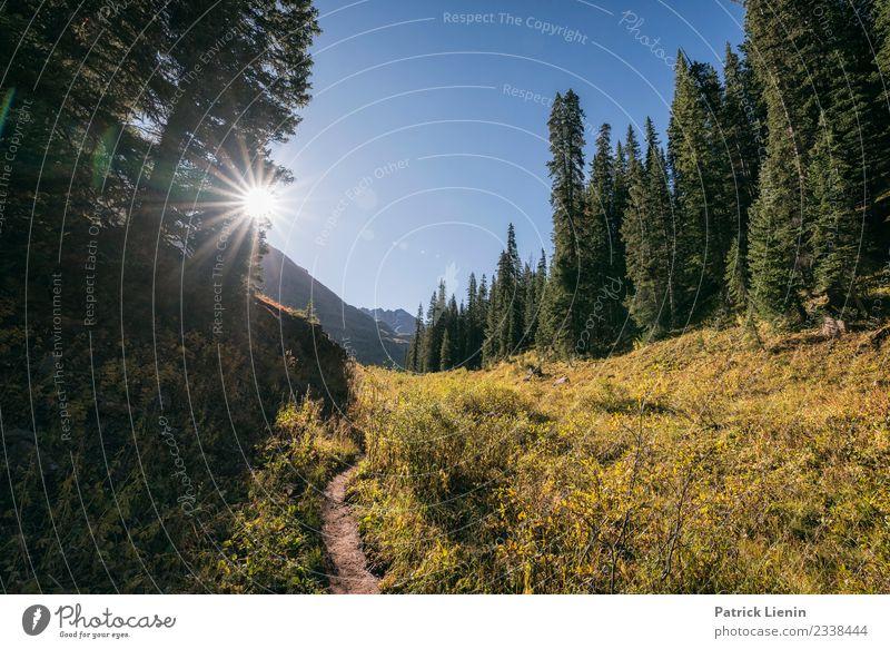 Maroon-Snowmass Wilderness Wohlgefühl Zufriedenheit Sinnesorgane Erholung Ferien & Urlaub & Reisen Ausflug Abenteuer Ferne Freiheit Berge u. Gebirge wandern